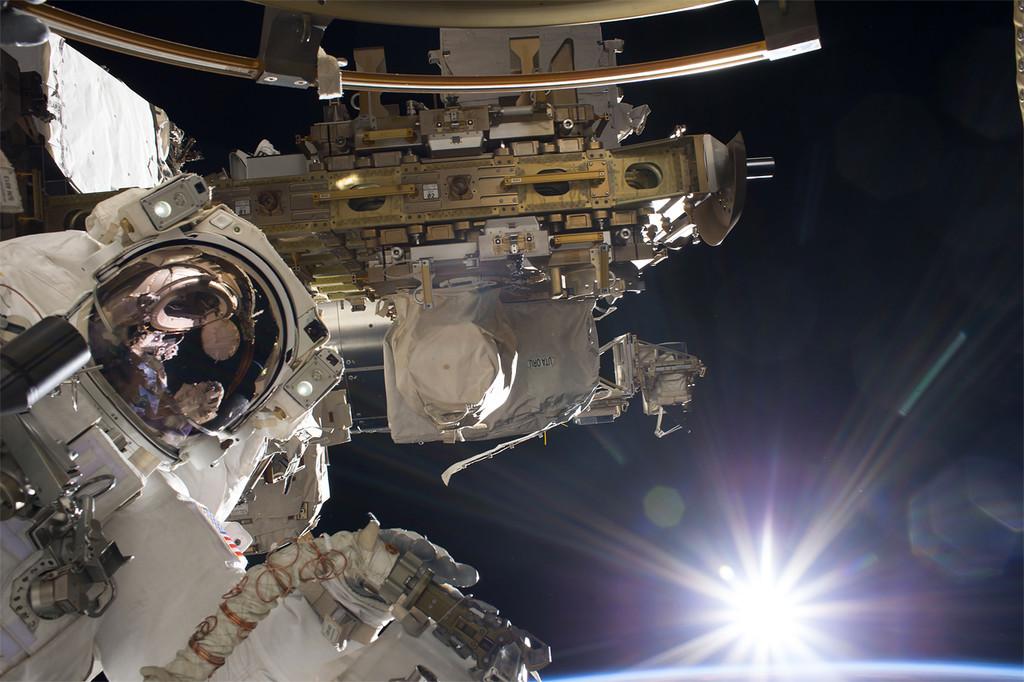 Permalink to La posible bacteria extraterrestre que han encontrado en la Estación Espacial Internacional puede ser muy terrestre
