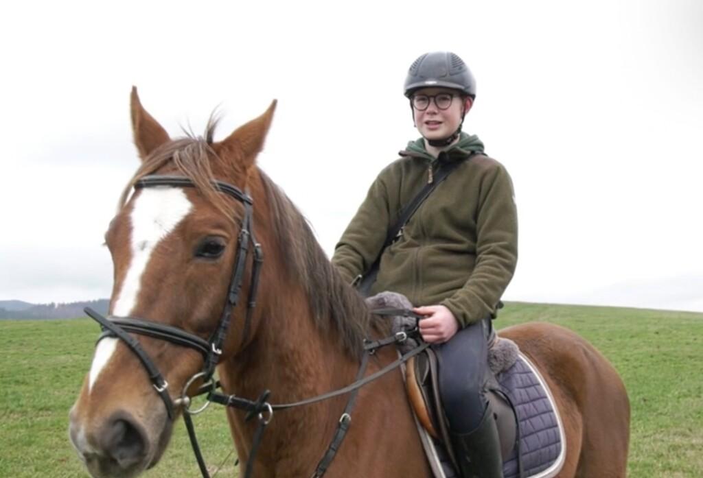 El internet alemán es tan lento que hicieron una carrera entre WeTransfer y un caballo para transportar 4,5 GB: ganó el caballo