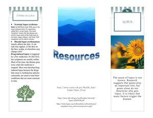 Calaméo Lupus Brochure