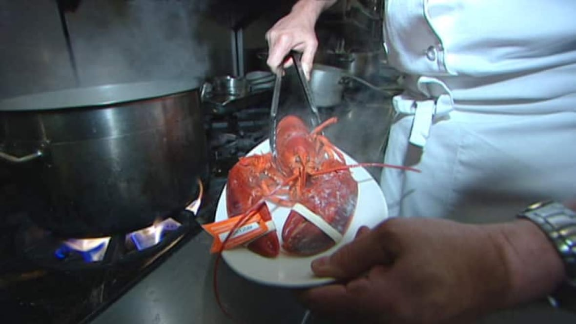 Lobster And Crab Can Probably Feel Pain Says Study Nova
