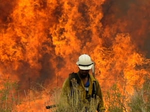 A report by the Intergovernmental Panel on Climate Change (IPCC) released Friday says global warming is 'extremely likely' caused by humans and that our carbon emissions continue to change the world's climate. Here's a look at how photographers around the world this year have documented extremes in climate and their repercussions. In this image, an Arizona firefighter walks away after setting a 'back burn,' one method of defence against the wildfires that ravaged the state.
