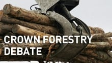 New Brunswick Crown foresty debate