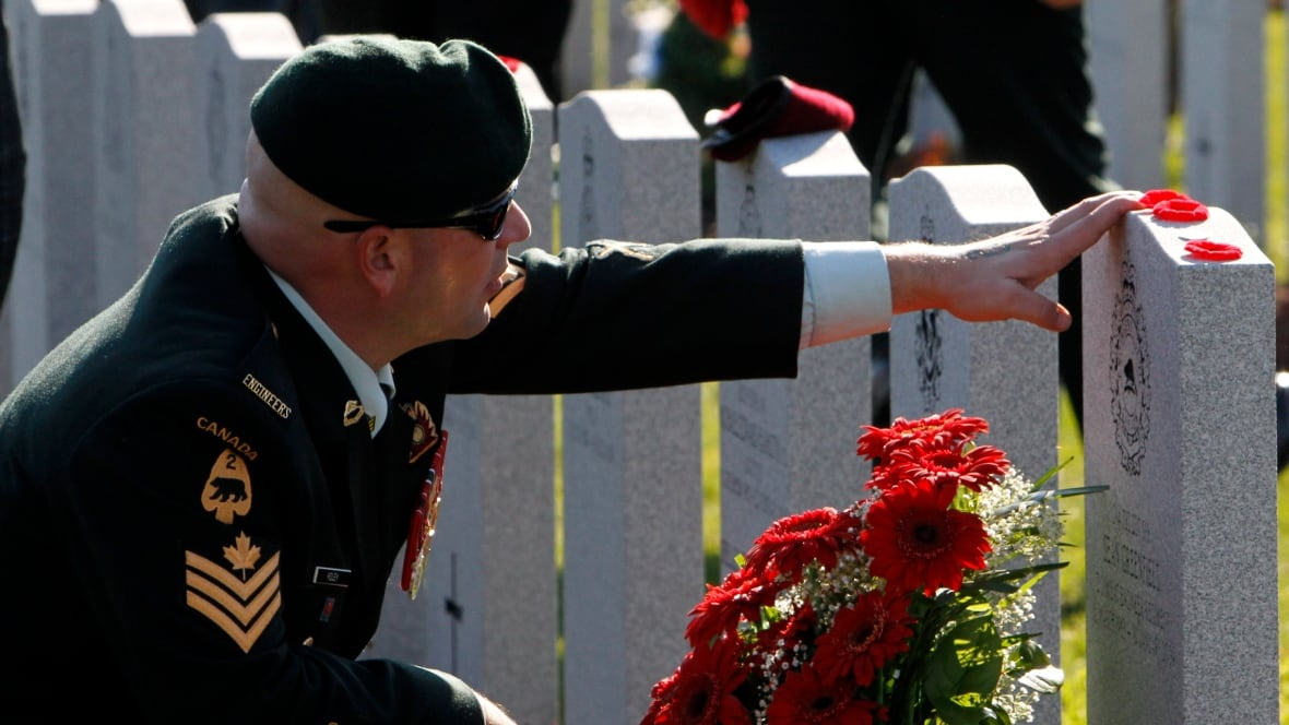 Remembrance Day draws huge crowds as National War Memorial rededicated  Canada  CBC News