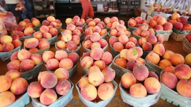 Jay Subramanian's has developed a spray that would extend the lifespan of peaches and nectarines by at least week - doubling its shelf life.