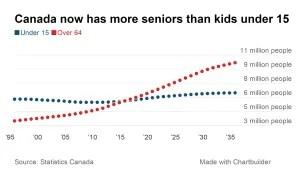 senior bulge chart
