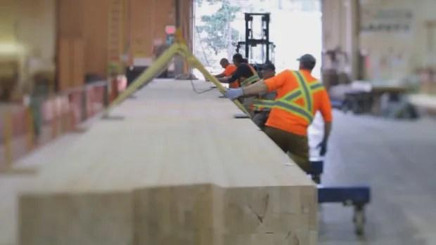 Large wood