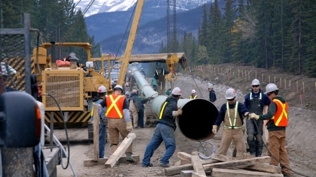 The National Energy Board has recommended the federal government approve Kinder Morgan's Trans Mountain pipeline.