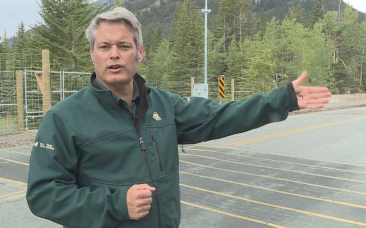 Banff Park hopes to save more animals with $26M boost to ...