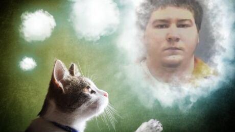 Brendan Dassey cat image