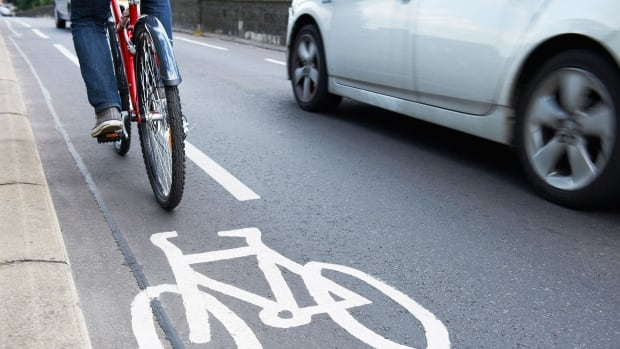 Coun. Janice Lukes says dedicated bike lanes are far more effective at stimulating cycling than painted-on lanes. She has thus far failed to convince council colleagues to try out a temporary bike grid.