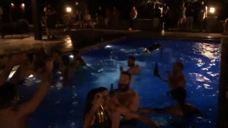 Penguins-pool-party