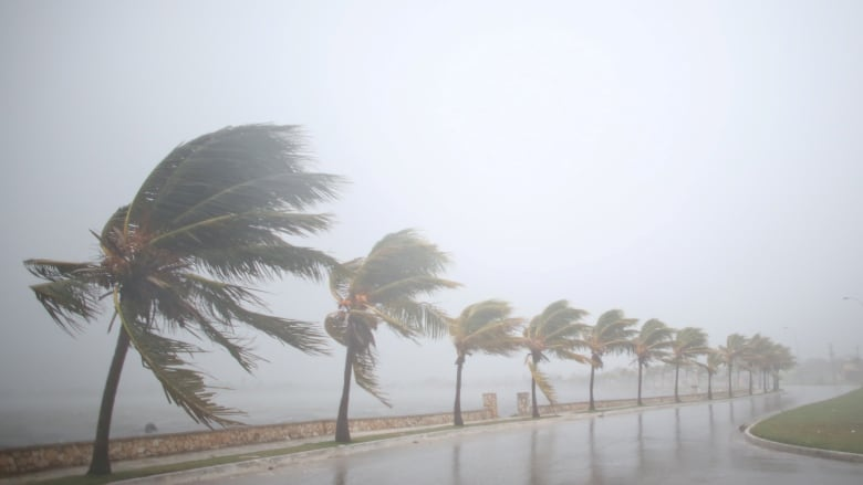 caribbean assesses damage from