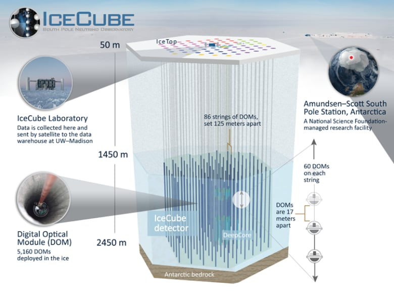 'Ghost particle' reveals source of mysterious cosmic rays diagram of icecube detector