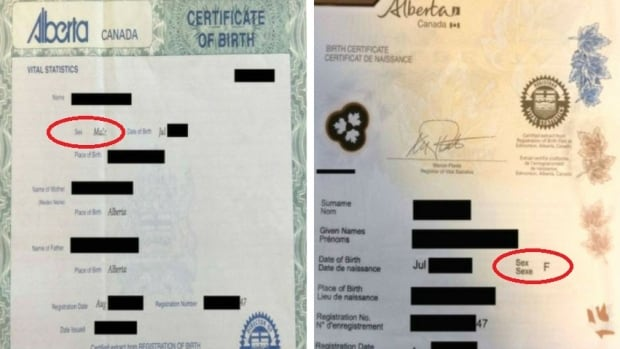 Alberta man changes gender on government IDs for cheaper car insurance | CBC News