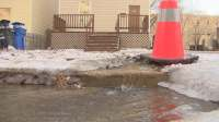 Water flows into street while taps dry since October at ...