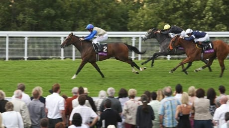 Goodwood Festival: Horse Racing on CBC - DAY 5