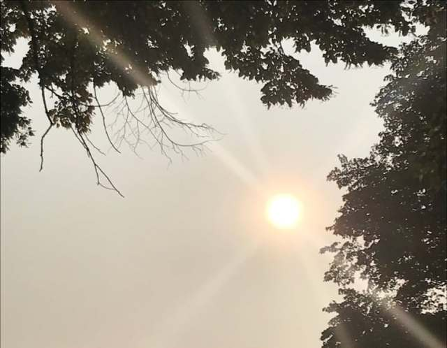 U.S. forest fires make the Big Smoke even smokier, but there's no risk to  human health, expert says | CBC News