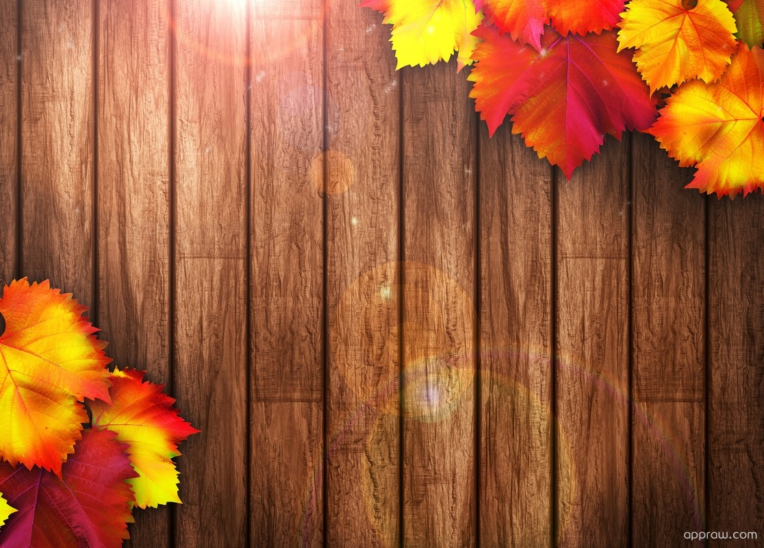 Fall Leaves Live Wallpaper Iphone Autumn Wooden Background Wallpaper Download Autumn Hd