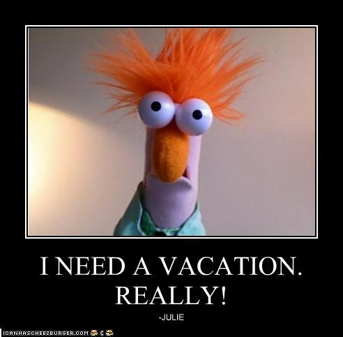 I Need A Vacation Really Cheezburger Funny Memes Funny Pictures