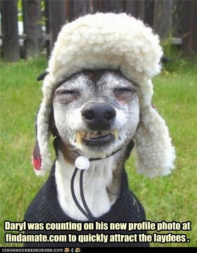 Funny Animal Profile Pictures : funny, animal, profile, pictures, Cheezburger?, Profile, Funny, Animals, Online, Cheezburger