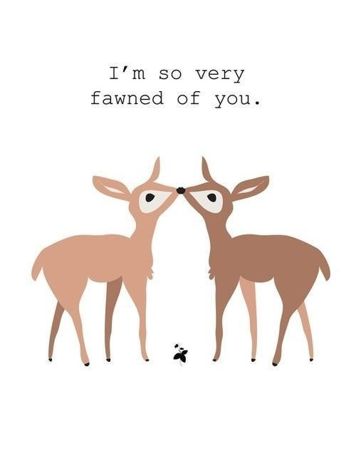Funny Deer Captions : funny, captions, Funny, Pictures, Cheezburger