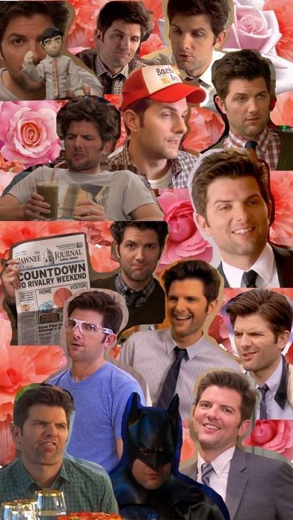 Funny Picture Collage : funny, picture, collage, Culture, Collage, Funny, Celebrity, Pictures, Cheezburger