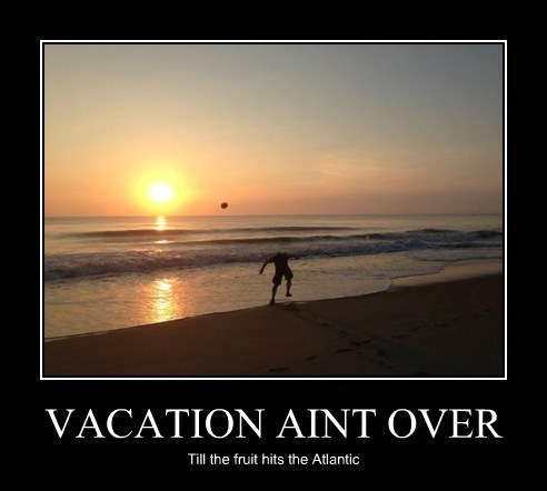 Vacation Aint Over Cheezburger Funny Memes Funny Pictures