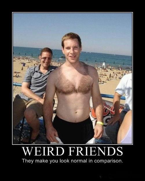 Weird Friends Meme : weird, friends, Choose, Friends, Better, Demotivational, Posters, Funny, Pictures