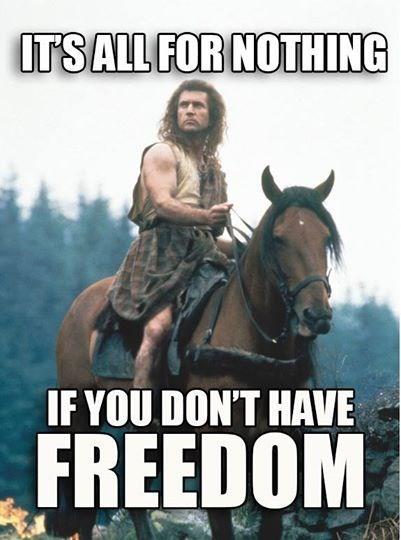Mel Gibson Freedom Meme : gibson, freedom, Memebase, Braveheart, Memes, Funny, Cheezburger