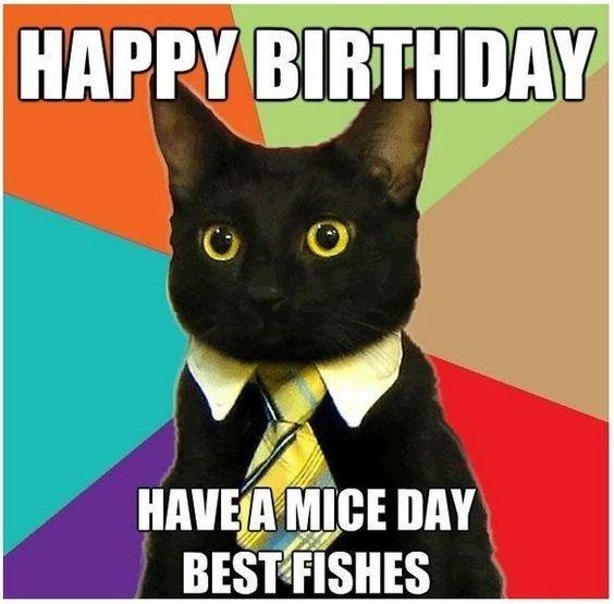 dozens of hilarious birthday