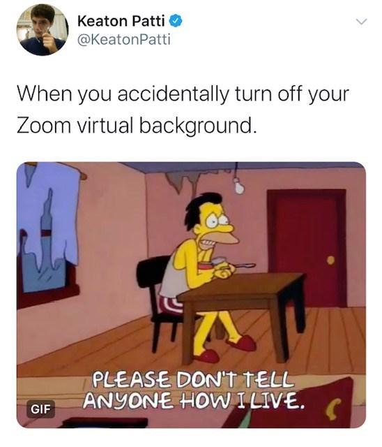 Funny Images Zoom Virtual Background Meme