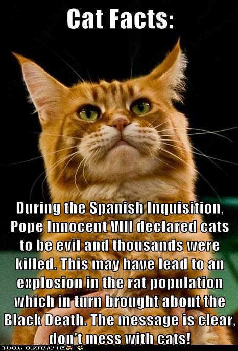 During The Spanish Inquisition Pope Innocent VIII Declared Cats To Be Evil And Thousands Were