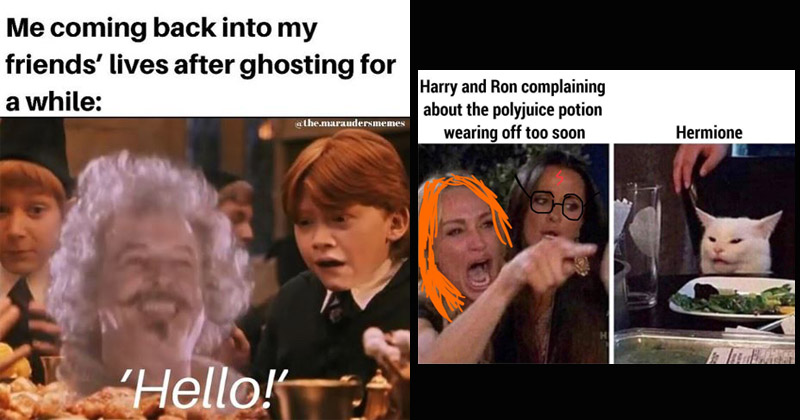 18 Very Dumb Harry Potter Memes For The Sirius-ly Obsessed ...