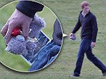 Prince Harry showed he is a man of his word and an excellent uncle-to-be when he was pictured clutching the bear as he arrived home at Kensington Palace.