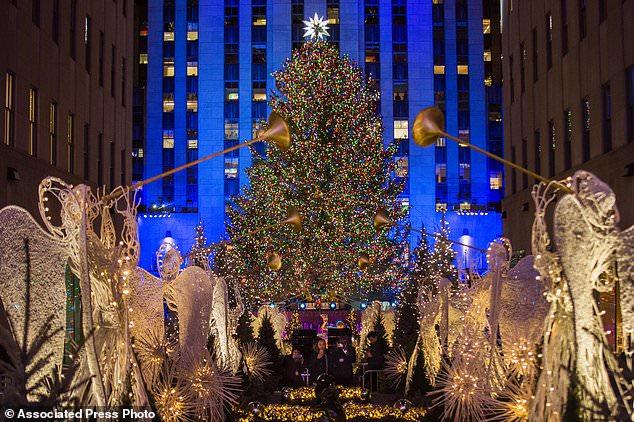 Christmas Lights Arizona
