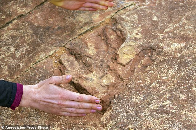 The site, lined with hundreds of prehistoric raptor tracks, has been heavily damaged in the past six months. Visitors have been dislodging dinosaur tracks imprinted in sandstone and throwing the pieces into a nearby lake, officials said