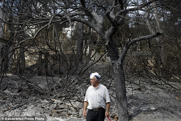 https://i0.wp.com/i.dailymail.co.uk/1/2018/07/27/08/3769698-5996791-A_local_resident_stands_in_front_of_a_burned_forest_in_Mati_east-a-5_1532676658748.jpg?w=736&ssl=1