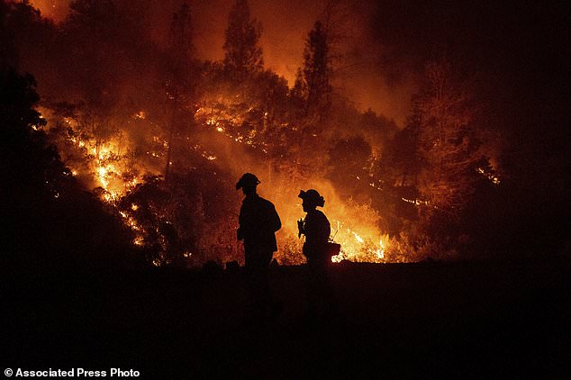On Tuesday, August 7, 2018, near Ladoga, California, firefighters are overseeing a fire in the fight against the Ranchfire, which is part of the Mendocino complex. (AP Photo / Noah Berger)