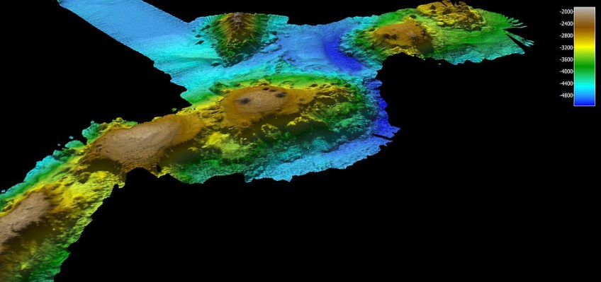 The seamounts are a 'biological hotspot' that supports life, both directly on them, as well as in the ocean above