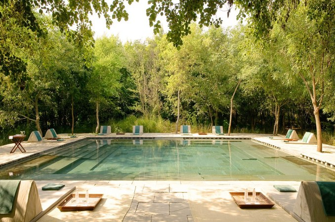 This image shows the accommodation for the Ranthambore National Park leg of the trip - Aman-i-Khas, a luxury tent safari outpost set in a sun-dappled brushwood forest