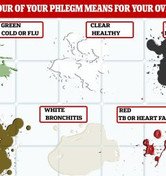 phlegm colour chart what your mucus says about your health [ 1908 x 1146 Pixel ]