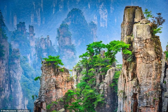 The incredibly jagged peaks are located in the Wulingyuan Scenic Area, Zhangjiajie. The area is on the UNESCO World Heritage List and is dominated by more than 3,000 narrow sandstone pillars and spiers. Some climb to 600 ft