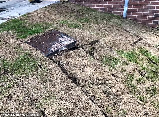 Mr Harris said the workmanship was 'shoddy' and the lawn, pictured, is 'bumpy'