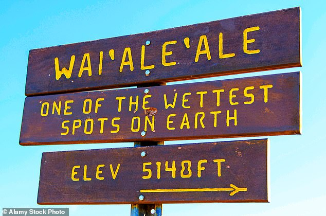 The sign for Whales, the second highest point of the island and one of the wettest spots in the world
