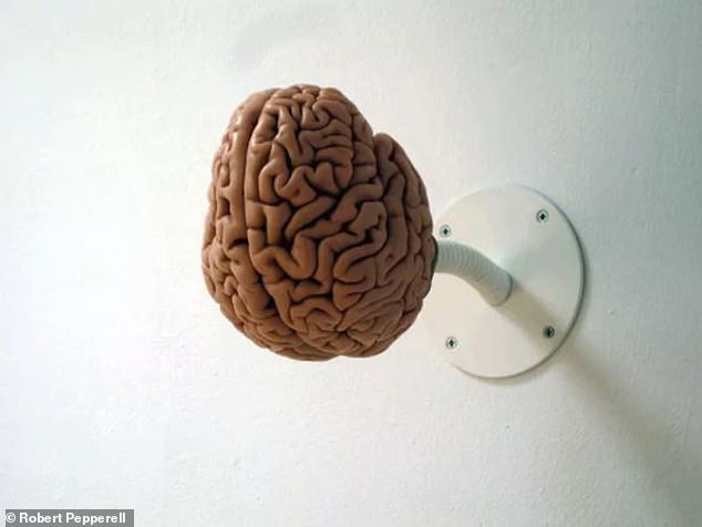 """Is the human brain a squishy digital computer or a sensitive organic energy processing tool? Installation image of """"I am a brain"""", 2008. Cast of a human brain made of resin and metal"""