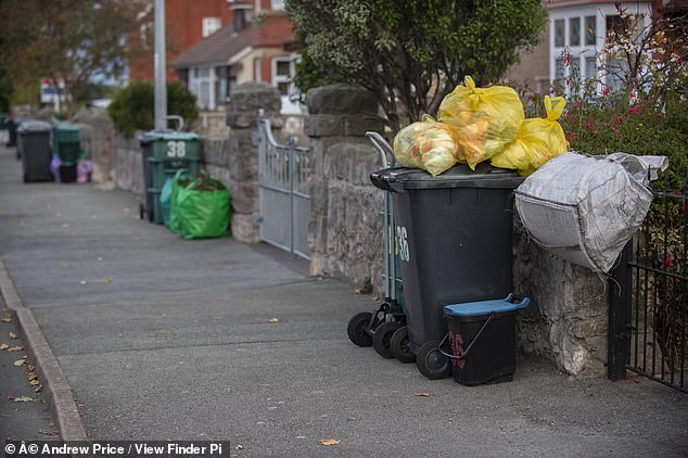 On bin day extra bags of rubbish were piled high on top of household bins