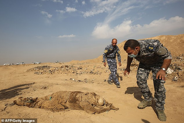 Iraqi soldiers inspect a decomposed body they have hauled from the mass grave in Hamam al-Alil