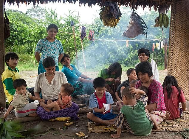 The farmer community Tsimane (pictured) from the lowlands of Bolivia once had the