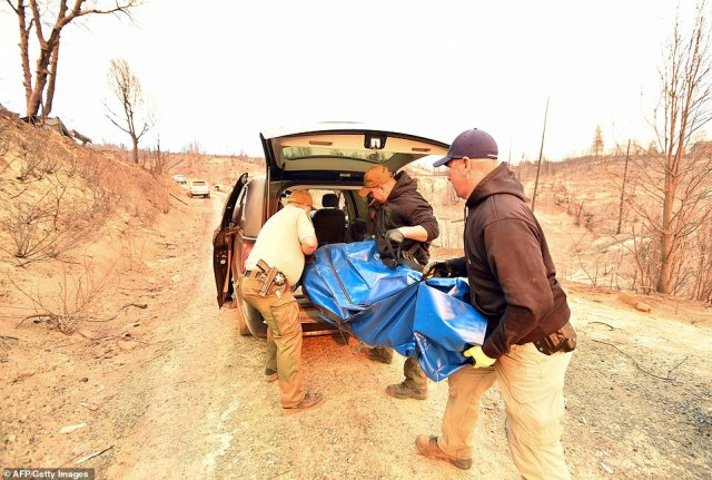 The death toll rose on Sunday after the remains of five people were found inside houses in Paradise, while another was found in a nearby car (pictured, body bags are loaded into a hearse in Paradise)