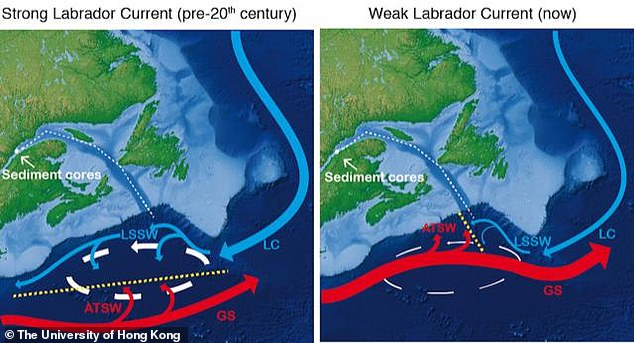 The weakening ocean: This is a schematic of the circulation in the western North Atlantic during episode of strong (left) and weak (right) westward transport of the Labrador Current (LC). The oceanography of this region is characterised by the interaction of water masses formed in the Labrador and moving westward (LC and Labrador Sea Slope Water (LSSW)) and the water masses moving eastward originating as the Gulf Stream (GS) and its Atlantic Temperate Slope Water (ATSW). The exact location where these two water mass systems meet (yellow dashed lines) is determined by the strength of the northern recirculation gyre (white arrows), which then control the temperature.
